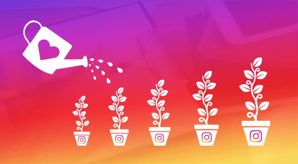 Tips for Improving Your Instagram Growth Strategy
