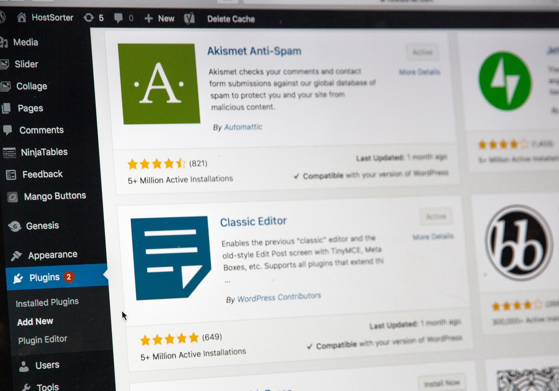 Wordpress developers in Laguna Hills